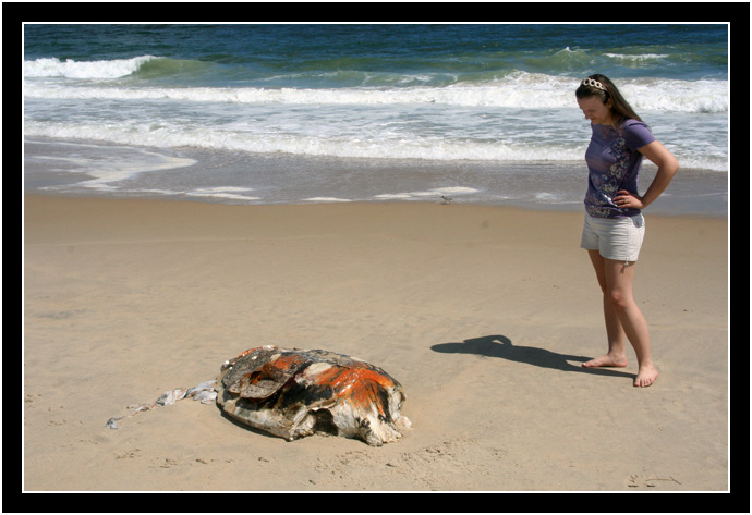 Oksana and a dead sea turtle