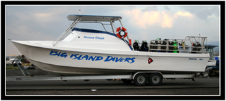 Our Big Island Divers boat.